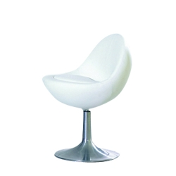 Designer Style Chairs -2271