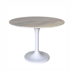 Table-Dinning-Table-2439