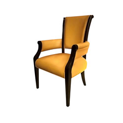 Dining Chairs-381